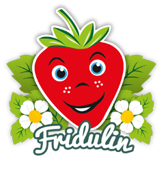 Fridulin Logo
